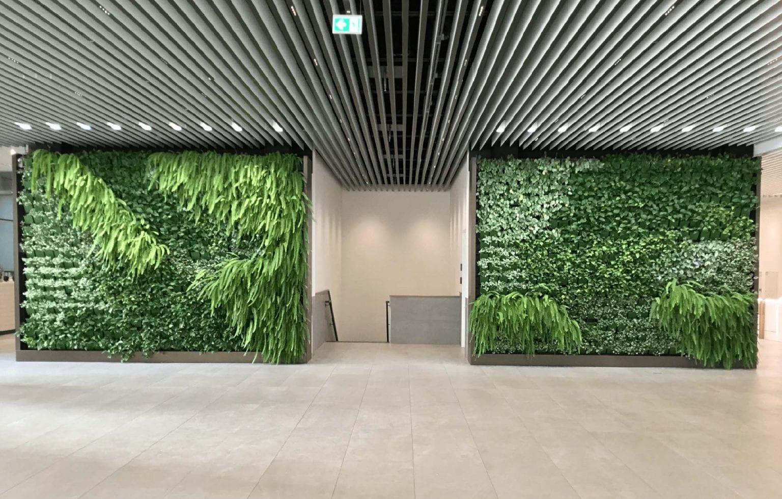 Green Office Pflanzenwand